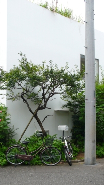 ©arcspace.com / house in a plum grove