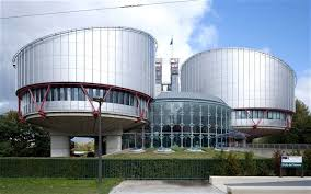 rogers_european court human right2