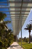 california academy of science_RPBW_13