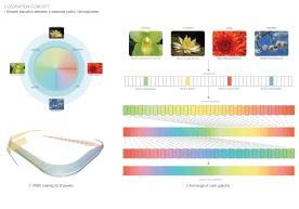 130307_Colouration concept