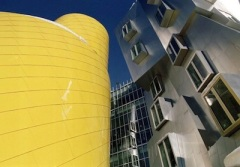 Ray and Maria Stata Center – Cambridge, MA