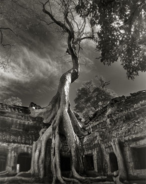 Portraits of time - Beth Moon 20
